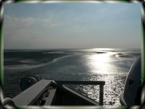 Nordsee Watt
